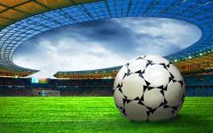 Gazon Fotbal 9